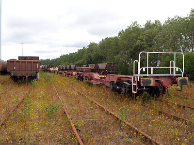 Millerhill Stored Wagons including some eurospines.