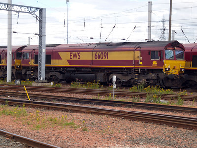 66091 at Mossend.