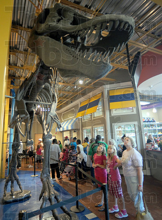 """T"" riffic: A giant T-Rex skeleton greets attendees at the Terre Haute Children's Museum Saturday morning."
