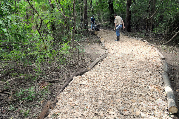 Inspection: Eagle Scout candidate Saxon Porter checks the newly built trail through Dobbs Park Saturday morning.