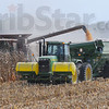 Good year: Denny Bell augers corn from his combine into a waiting grain cart in fields east of Terre Haute.