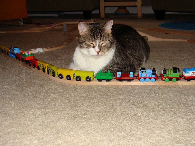 Sirajul likes playing trains