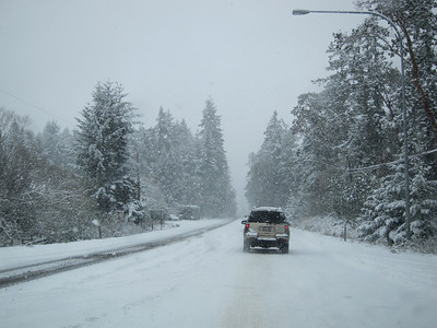 Snow on the drive to Sequim