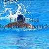 swim_rev009