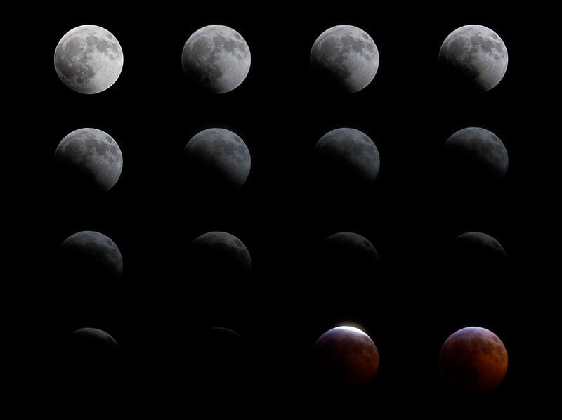 Total Lunar Eclipse on winter solstice, 2010.  This series of shots were each taken five minutes apart during the eclipsing of the moon.  Then the clouds moved in.