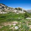 Meadow below Trail Lakes