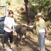 Ellen and Lidia make a friend-Imani Joseph