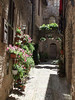 In the week preceding Le Infiorata, flower adorn every windowsill and balcony of Spello, Umbria.