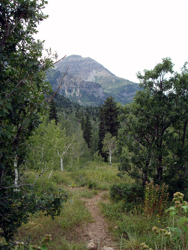 American Fork Canyon and Alpine Loop