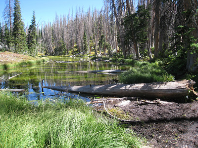 Alpine Pond, Cedar Breaks Nat Mon