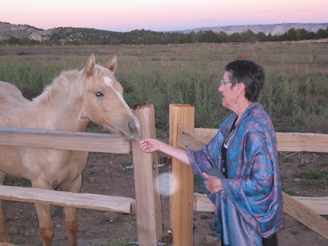 Filly and Lois, Zion Mountain Ranch