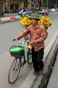 Flower vendor on bicycle