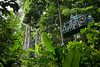 aerial tram rainforest st lucia 3