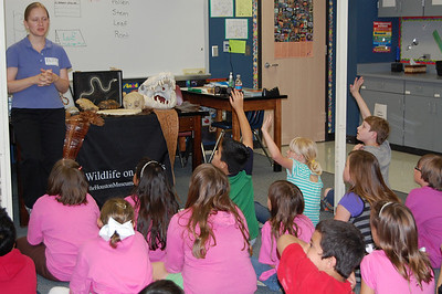 Wildlife on Wheels visits Windsong