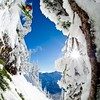 Skiing around the backcountry of Mount Baker, WA with David Hancock, John Wells and Adam Roberts