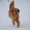 8544 Skylar Dec 12 2010