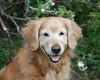 2381 Sasha May 5 2010