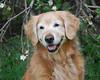 2375 Sasha May 5 2010