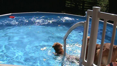 September Videos 2010