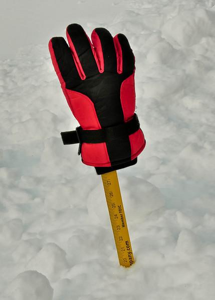 Twenty inches!