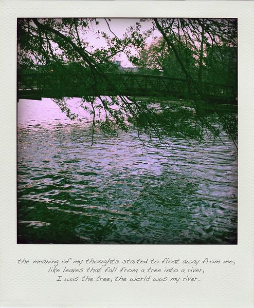 Second Place Fine Art<br /> 2010 Hal Fulgham Scholarship Contest<br /> Chelsea Sanchez<br /> Episcopal HS (Bellaire)<br /> Instructor: Cara DeBusk