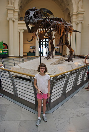 Sue, at the Field Museum