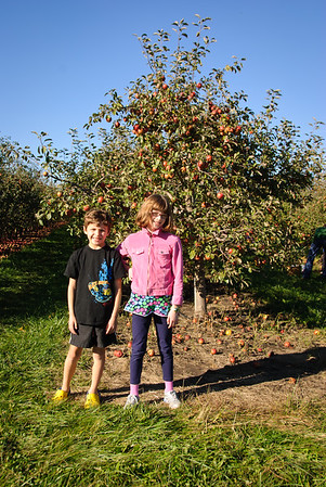 Fall afternoon at the apple orchard.