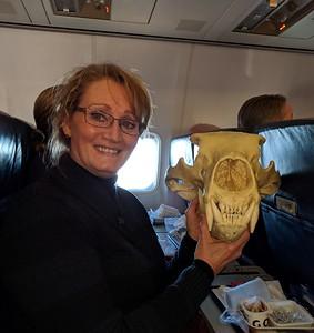 Irene Cabay & polar bear skull
