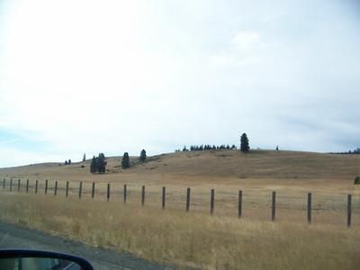 roadside view from I-90, Washington