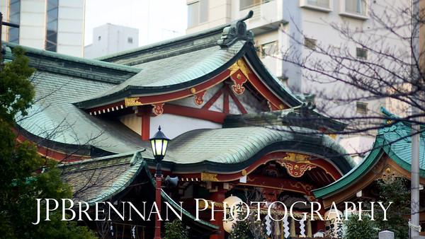 2011-01-11 Japan Day 01