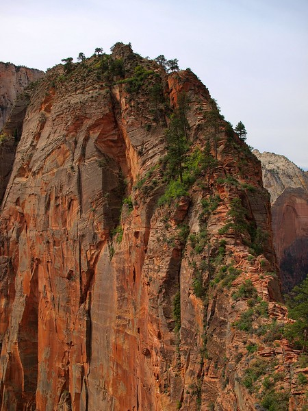 Zion National Park Utah