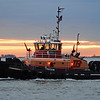 The Tug Freedom at sunrise in Boston Harbor