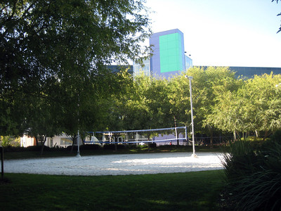 Beach volleyball court on the Google campus at Mountainview.