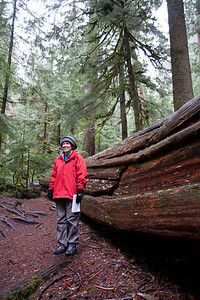 Field trip to Mt. Rainier