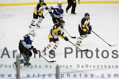 Girls Hockey vs St. Peter