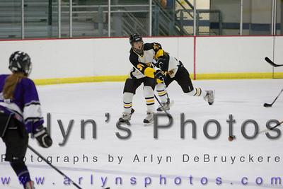 Hutch Girls Hockey vs Buffalo