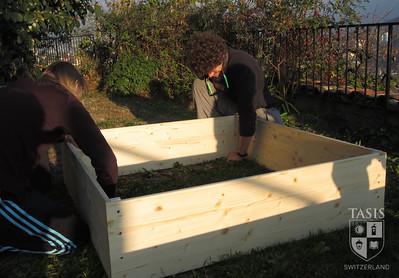 TASIS Garden Project - November