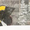 20110225_winter_0003