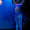 20110426_ewf_dance_show_692