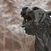 Winter campus scenics at SUNY Buffalo State.