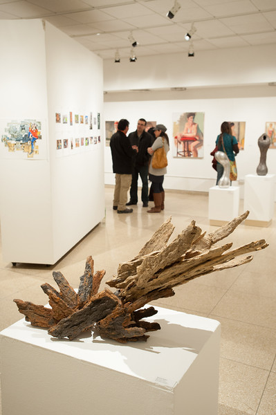 Fine Arts Student Show in the Czurles-Nelson Gallery at SUNY Buffalo State.