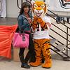 Bengal mascot at Homecoming Pep Rally at SUNY Buffalo State.