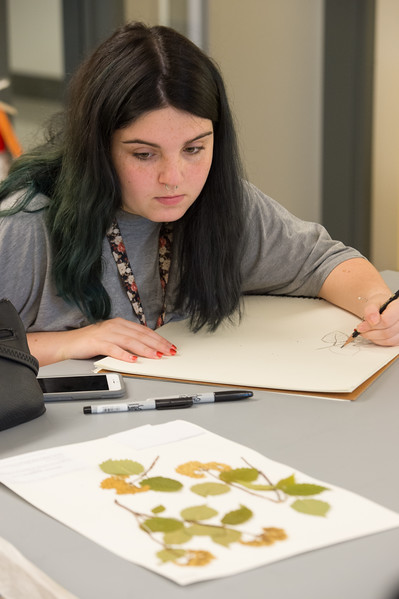 Professor Carol Townsend's 2D design class drawing plant specimens in the Eckert Herbarium at Buffalo State College.