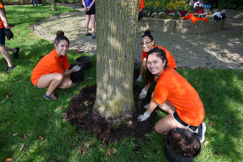 Students doing volunteer gardening work at Dr. Martin Luther King Jr. Park  during Bengal Dare to Care Day at Buffalo State College.