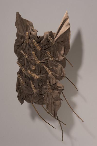 little_brown_bats_001