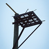 Osprey nesting platform at the Great Lakes Center at Buffalo State College.