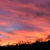 Sunrise over Barnes Crescent