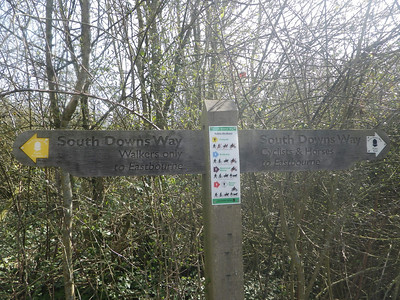 one of many waymarkers along the route