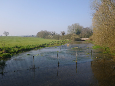 River Meon - one of four rivers the SDW crosses