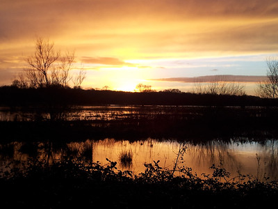 Sunset over Wimborne's flood plain